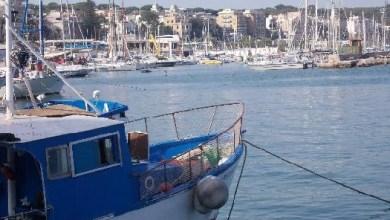 Photo of Porti e Pesca, approvati i progetti di Ischia e Forio