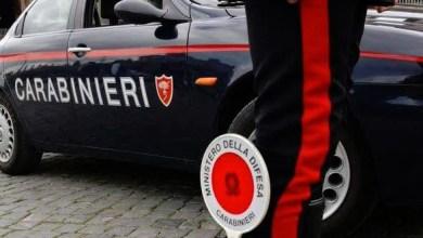 Photo of Controlli sul litorale, i Carabinieri sequestrano 70 kg di alimenti