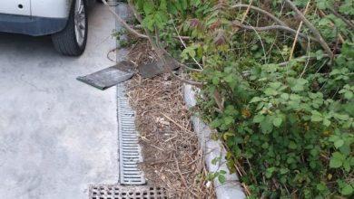 Photo of Tra baby centauri e parcheggio abbandonato, Monterone è in piena anarchia