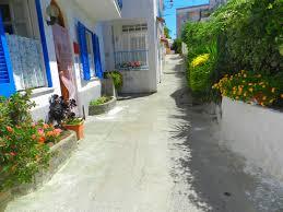 Photo of Turismo cafonal, alla Mandra vasi da fiori scambiati per gabinetti