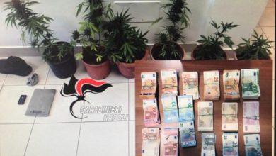 Photo of Procida, droga e 57.000 euro nel negozio: denunciati in due