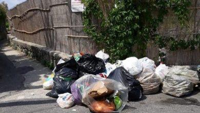 Photo of Emergenza rifiuti, A Forio umido in strada sotto al sole