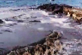 Photo of Liquami dal Rio Corbore, l'appello: Si metta fine a trent'anni di indecenza