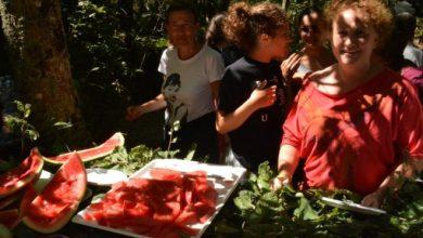 Photo of Che festa per il Ferragosto nei boschi della Falanga