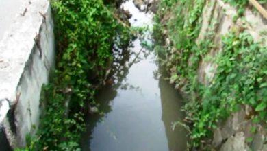 Photo of Ischia, il Rio Corbore e quelle risposte che non arrivano