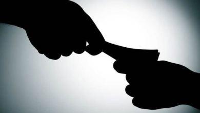 Photo of «Fate lavorare in nero»: la denuncia diventa virale