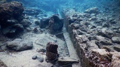 Photo of Aenaria, un futuro da museo sottomarino Stefanile: «Perché la memoria va raccontata»