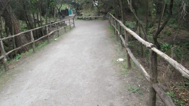 Photo of Precipita in un fossato, salvato dai Vigili del Fuoco