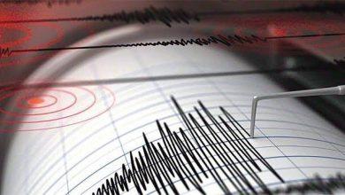 """Photo of La """"percezione"""" dei terremoti, l'INGV e lo studio su Casamicciola"""