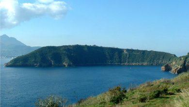 Photo of Marevivo e Univerde a difesa delle Aree Marine Protette