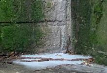 Photo of Scarico illegale di vernice, indaga la guardia costiera
