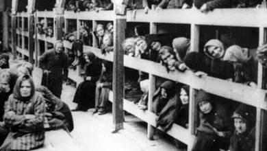 Photo of L'Olocausto spiegato ai giovani, oggi, il seminario gratuito del CIDI