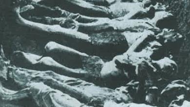 Photo of I documenti maledetti della Shoah salvati a Casamicciola