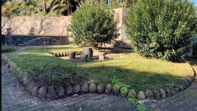Photo of Belvedere di Casamicciola: il paradosso dell'aiuola bifaccia