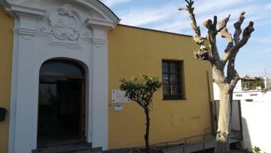 Photo of Biblioteca Comunale Antoniana, gli 80 anni in un logo celebrativo