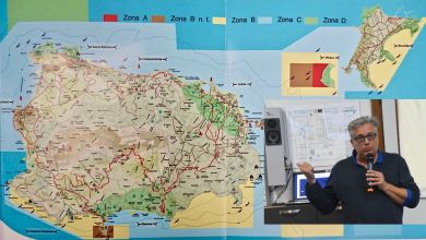 Photo of AMP Regno di Nettuno 2020,  Miccio: «Avanti tutta, ma il mare  è il grande dimenticato della politica»