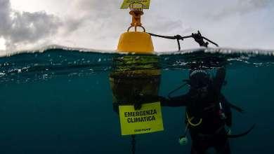 Photo of Ischia a Presa diretta, a raccontare il polmone blu Maria Cristina Gambi