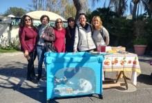 Photo of Il gruppo Pelosi d'Ischia a lavoro per gli animali dell'isola