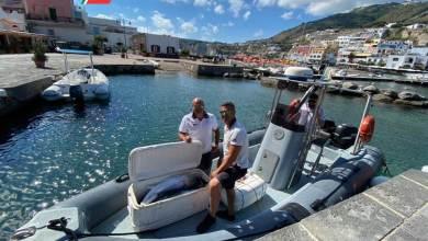 Photo of Pesca sportiva illegale, sequestro della guardia costiera