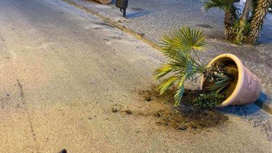 Photo of IL CASO Vandali in azione, fioriere distrutte nel centro di Ischia