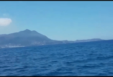 Photo of Avvistate due balene tra Procida e Ischia. Ecco il video