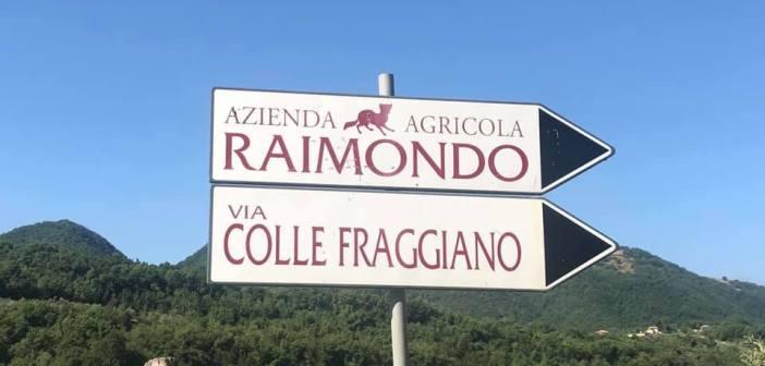 Vini Raimondo, il futuro è adesso e il meglio deve ancora venire