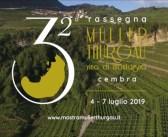 11 Medaglie d'oro e 8 d'argento per il XVI concorso internazionale vini Muller Thurgau