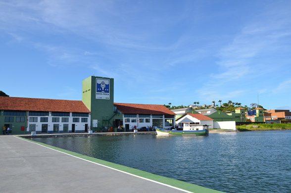 Desembarque de Atum aumentou 550% no Terminal Pesqueiro de Ilhéus 6