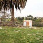 Pinole - Backyard 01