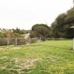 Pinole - Backyard 02