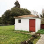 Pinole - Backyard 03