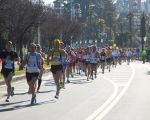 Lago Maggiore Marathon 2013