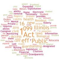 Illinois Laws Part 2