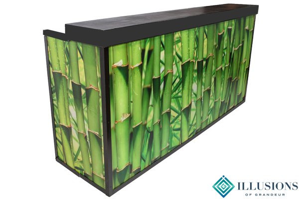 Illuminated Bamboo Bar