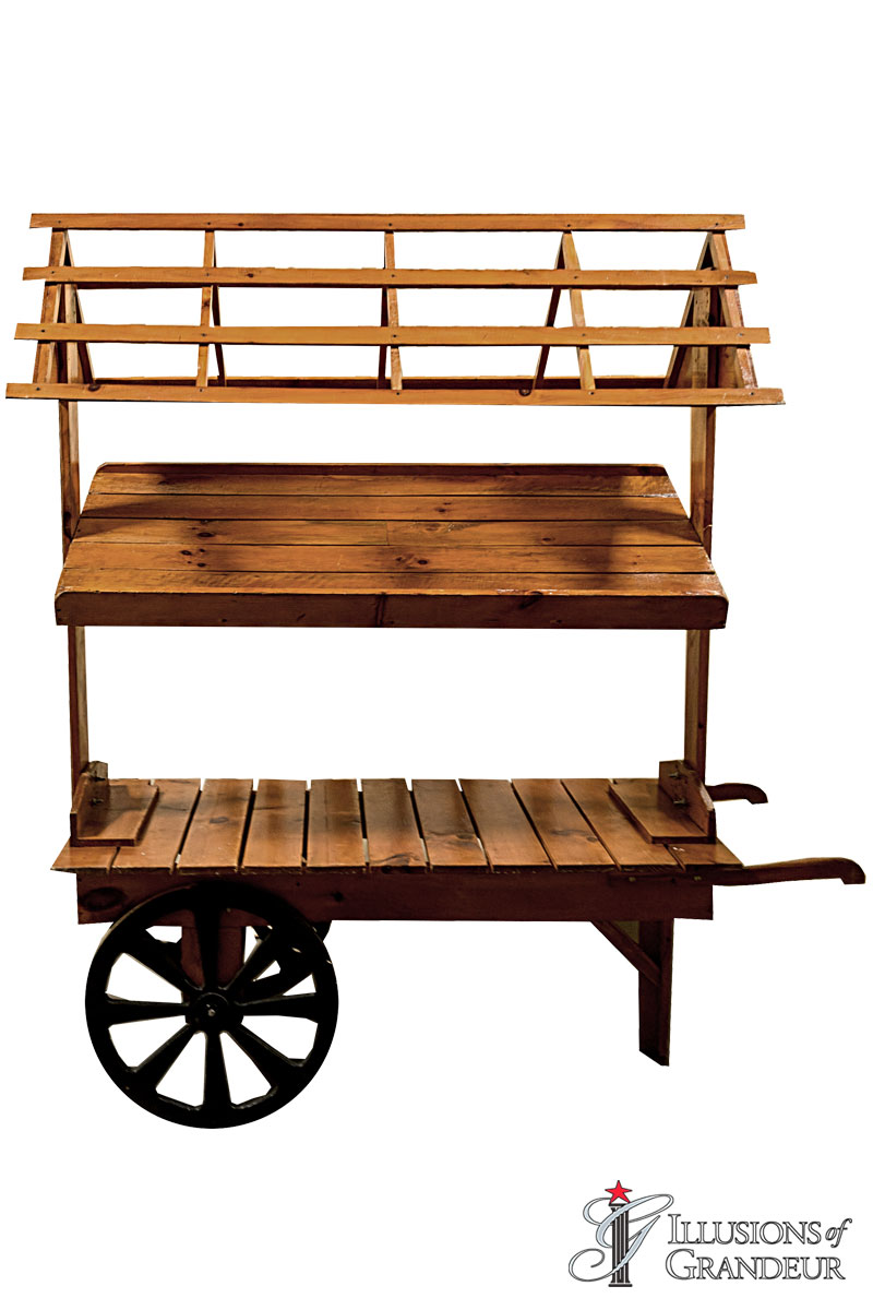 Two tiered Carts