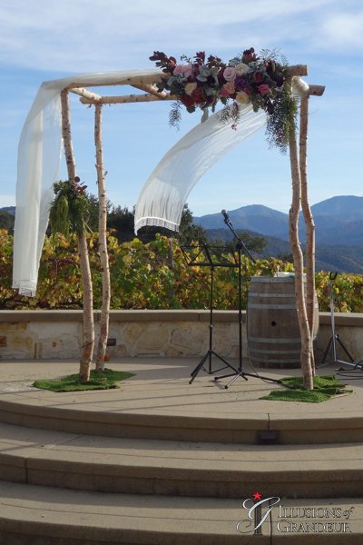 Wedding Birch Arch