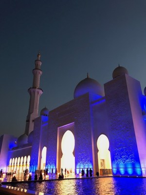 Moschea Seikh Zayed notturna blu