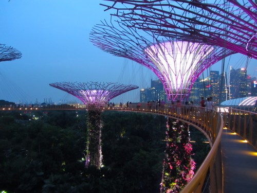 Singapore-passerella-supertree-gloves