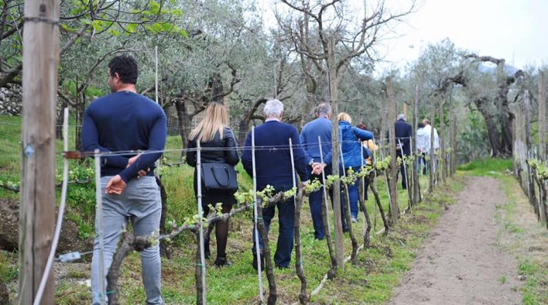 Turismo/Campania , alla scoperta di Avella, la patria della nocciola, percorsi storici millenari e tipicità