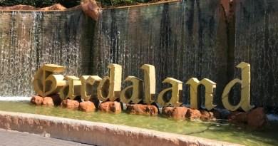 Gardaland 4 All -due giorni di incontri con le Associazioni per la disabilitàverso un divertimento sempre più accessibile