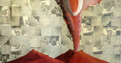 """Fino al 11 ottobre al Mav di Ercolano la mostra """"Vesuvio in the box"""""""