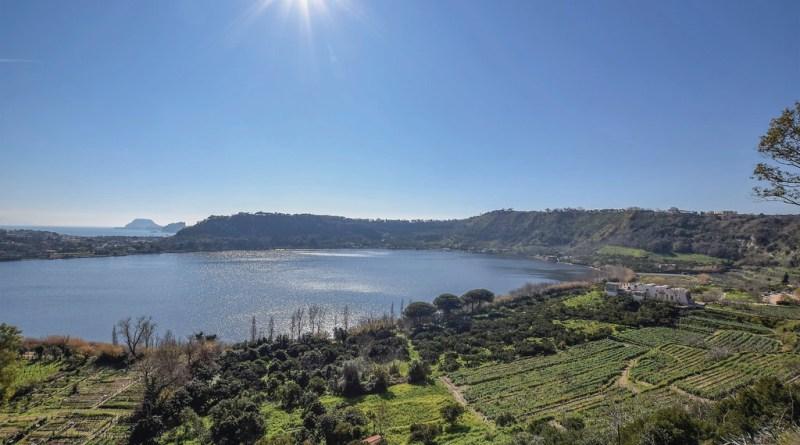Tora Farm, l'olio extravergine dalla Baia Domizia 1
