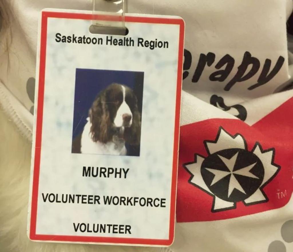 Murphy, il cane che grazie alla Pet Therapy regala felicità ai pazienti