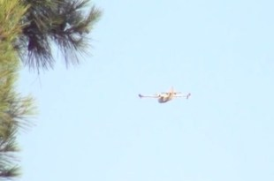 Incendi in Sicilia: Canadeir in azione