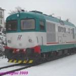 D3451007_sulmonaintrodacqua