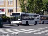 rossibus_020ombrine