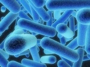 Penyakit Legionnaire