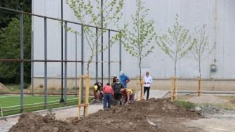 Continuă lucrările pentru amenajarea terenului de fotbal cu gazon sintetic din Fetești. FOTO Adrian Boioglu