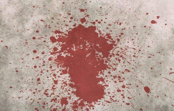 Omicidio Pierini, ultime notizie - Piacenza