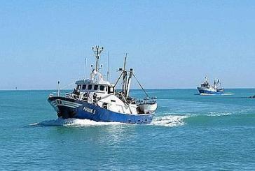 FLI: Vasto assente sui finanziamenti comunitari per la pesca